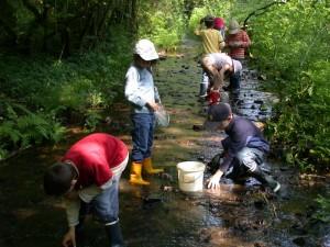 Pêche au ruisseau séjour classe théme: L'EAU