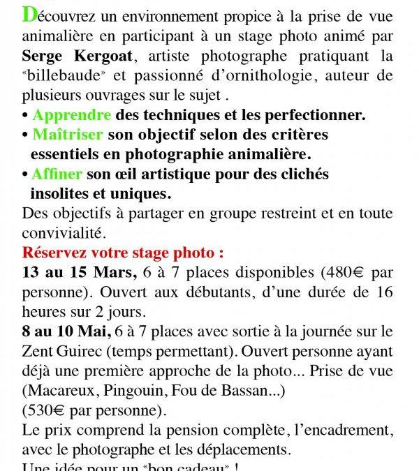 Stage de Photo Animalière