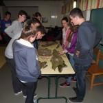 Biodiversité Ti Menez Are retransmission lycéens